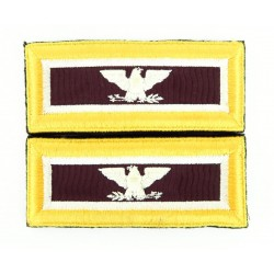 Set of U.S. Army Colonel...