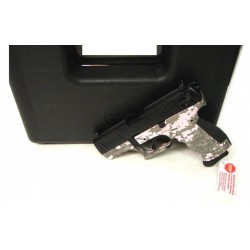 Walther P22 .22 LR (iPR19925)