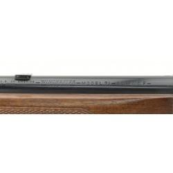 Winchester 71 .348 WCF (W9969)