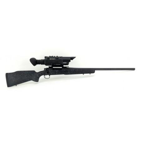 Remington Arms 700 .30-06 SPRG (R16477)