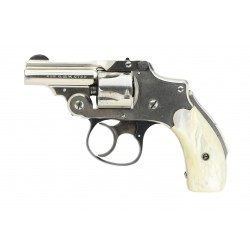 Smith & Wesson Safety...