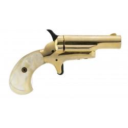 Butler Derringer .22 Short...