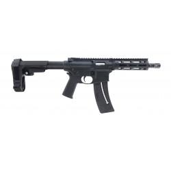 Smith & Wesson M&P15-22 .22...