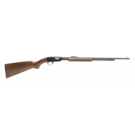 Winchester 61 .22 LR (W11148)