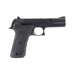 Smith & Wesson 422 .22LR...