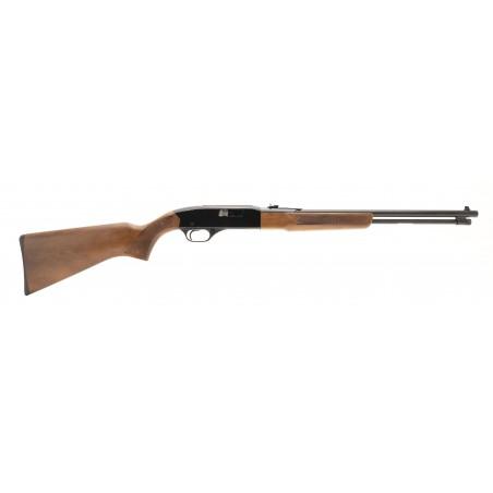 Winchester 190 22LR (W11217)
