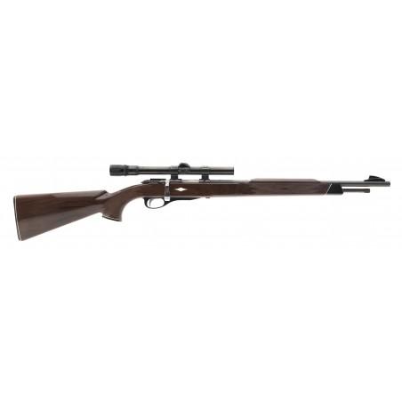 Remington Nylon 12 22LR (R29817)
