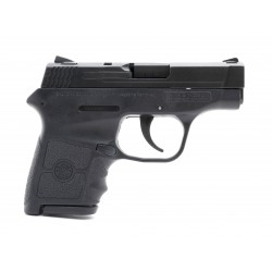 S&W M&P Bodyguard 380 ACP...