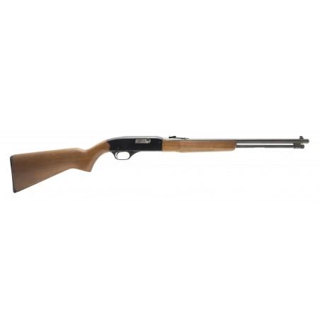 Winchester 190 22LR (W11358)