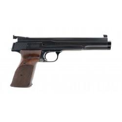 Smith & Wesson 41 Custom...