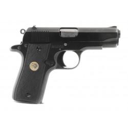 Colt Government .380 ACP...