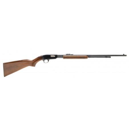 Winchester 61 .22 LR (W11307)