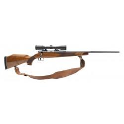 Colt Sauer Sport Rifle .243...