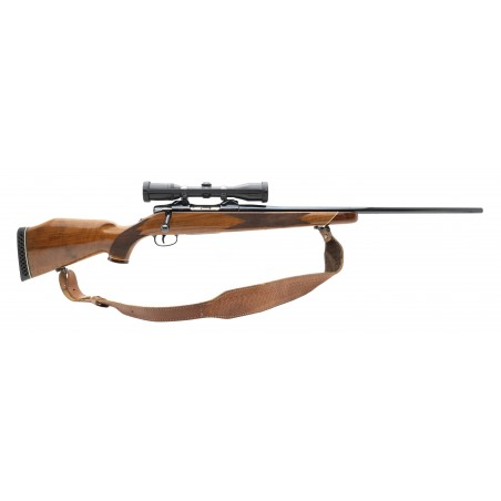 Colt Sauer Sport Rifle .243 Win (C17574)