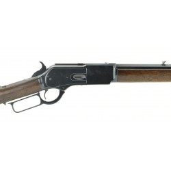 Winchester 1876 .45-60...